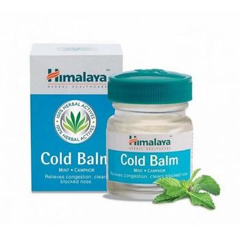 Himalaya Cold Balm Mint Camphor